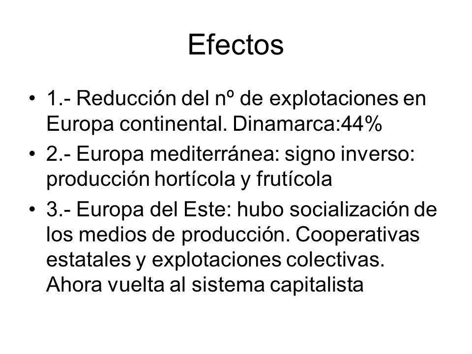 Efectos 1.- Reducción del nº de explotaciones en Europa continental. Dinamarca:44%