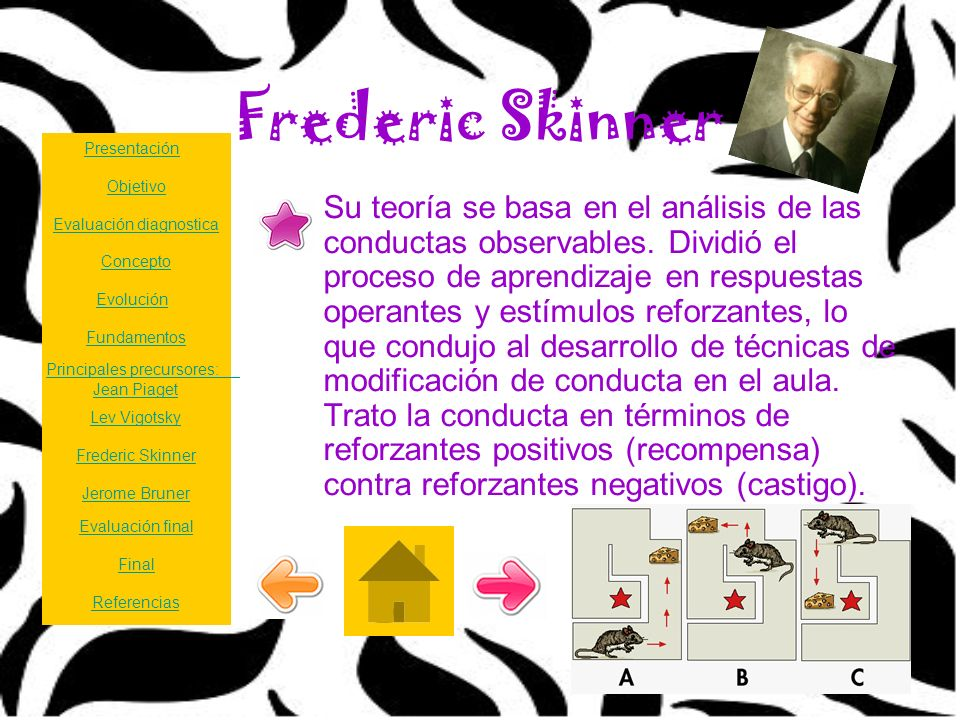 Frederic Skinner Presentación. Objetivo.