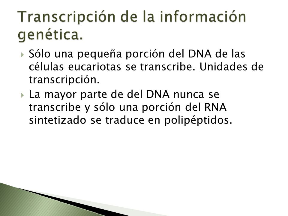 Transcripción de la información genética.