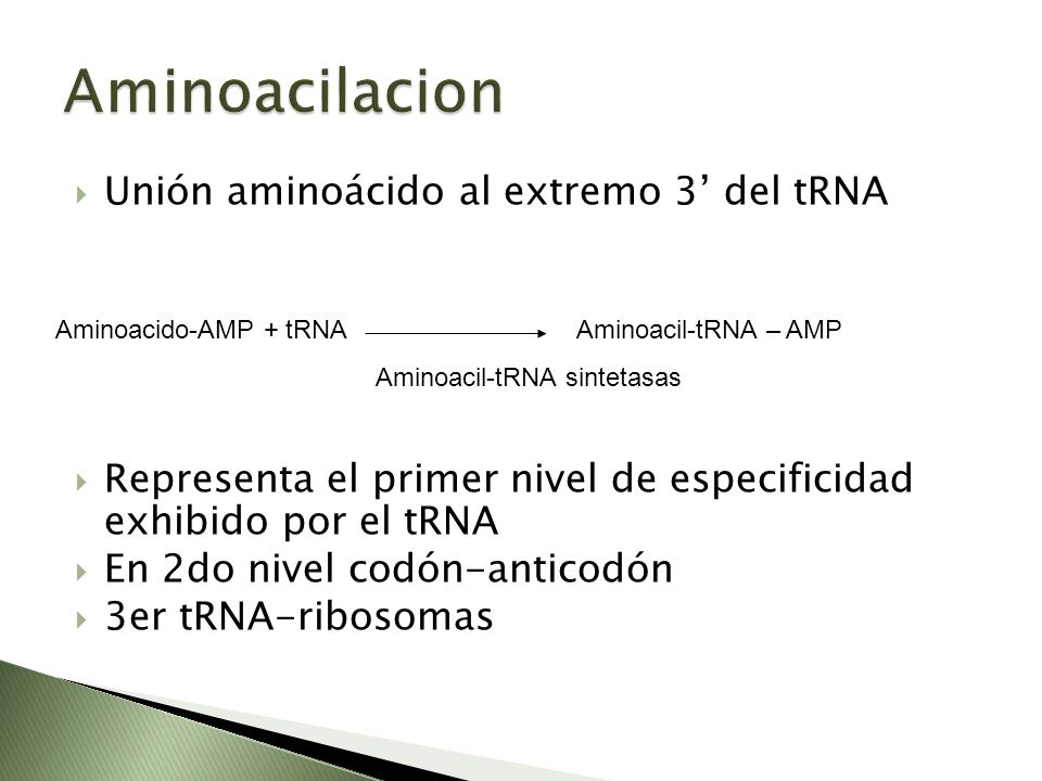 Aminoacil-tRNA sintetasas