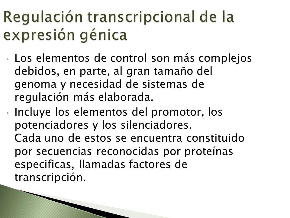 Regulación transcripcional de la expresión génica