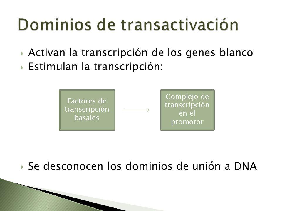 Dominios de transactivación