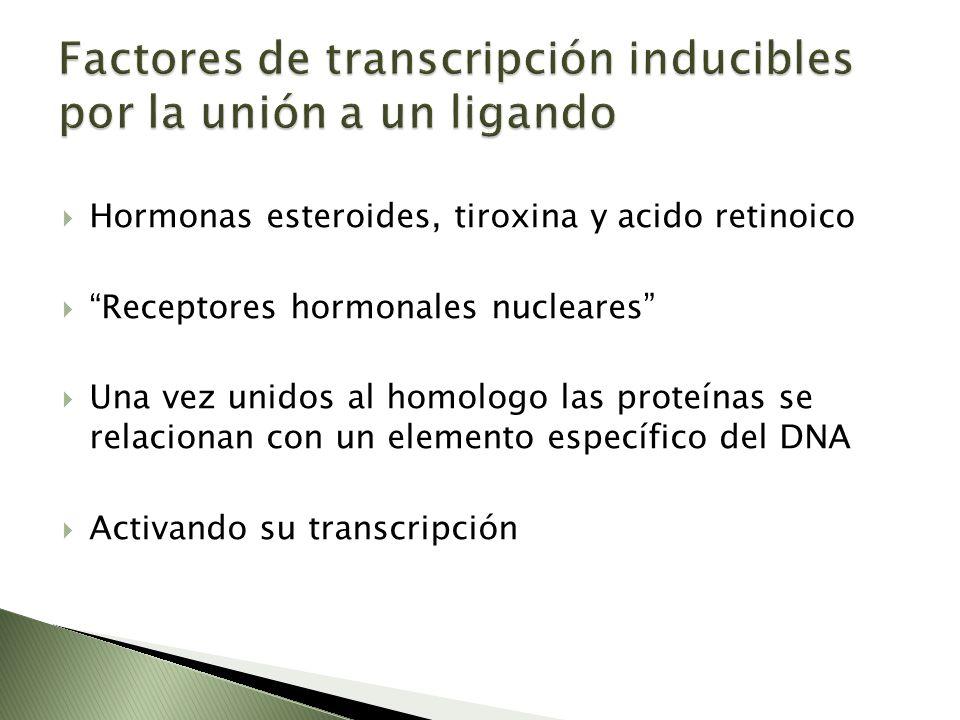 Factores de transcripción inducibles por la unión a un ligando