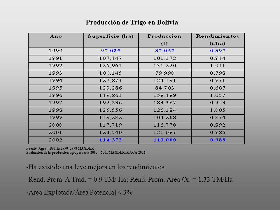 Producción de Trigo en Bolivia