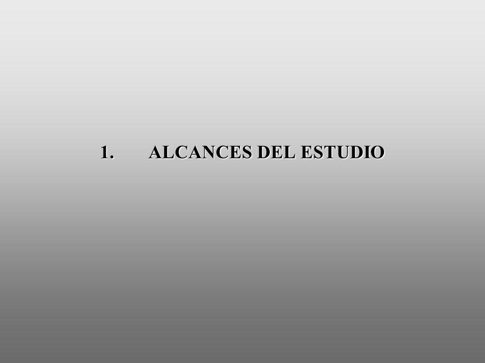 1. ALCANCES DEL ESTUDIO