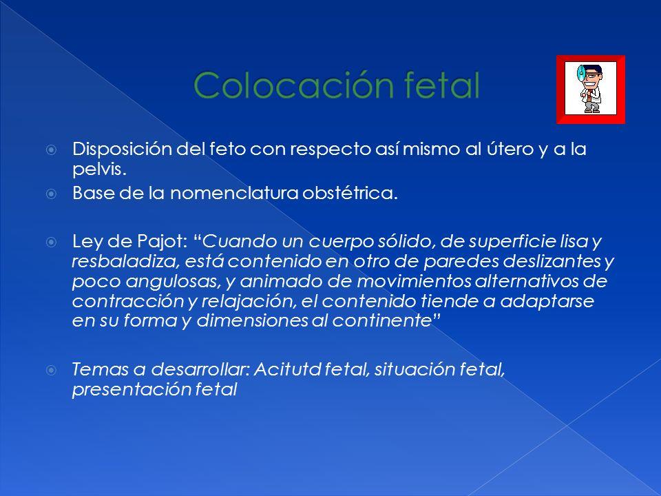Colocación fetalDisposición del feto con respecto así mismo al útero y a la pelvis. Base de la nomenclatura obstétrica.