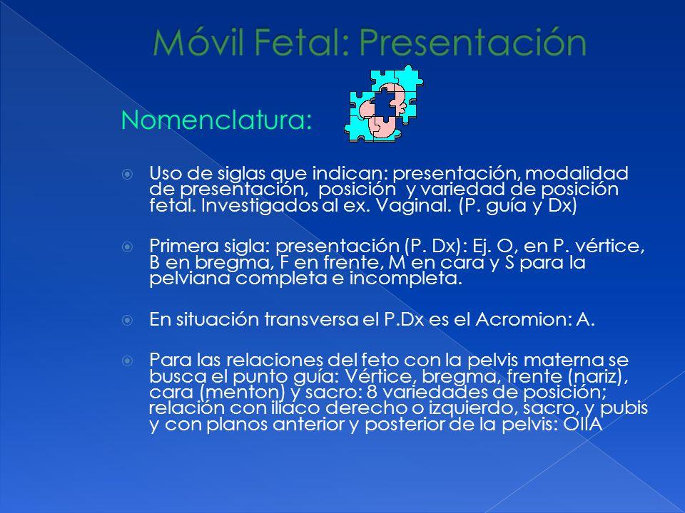 Móvil Fetal: Presentación