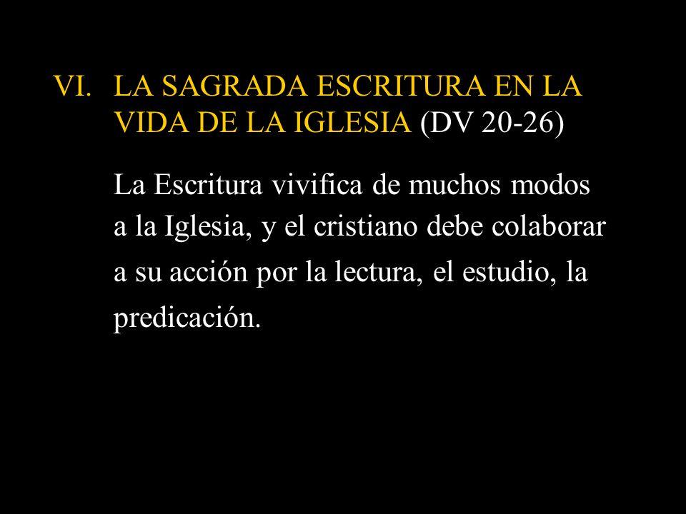 LA SAGRADA ESCRITURA EN LA VIDA DE LA IGLESIA (DV 20-26)