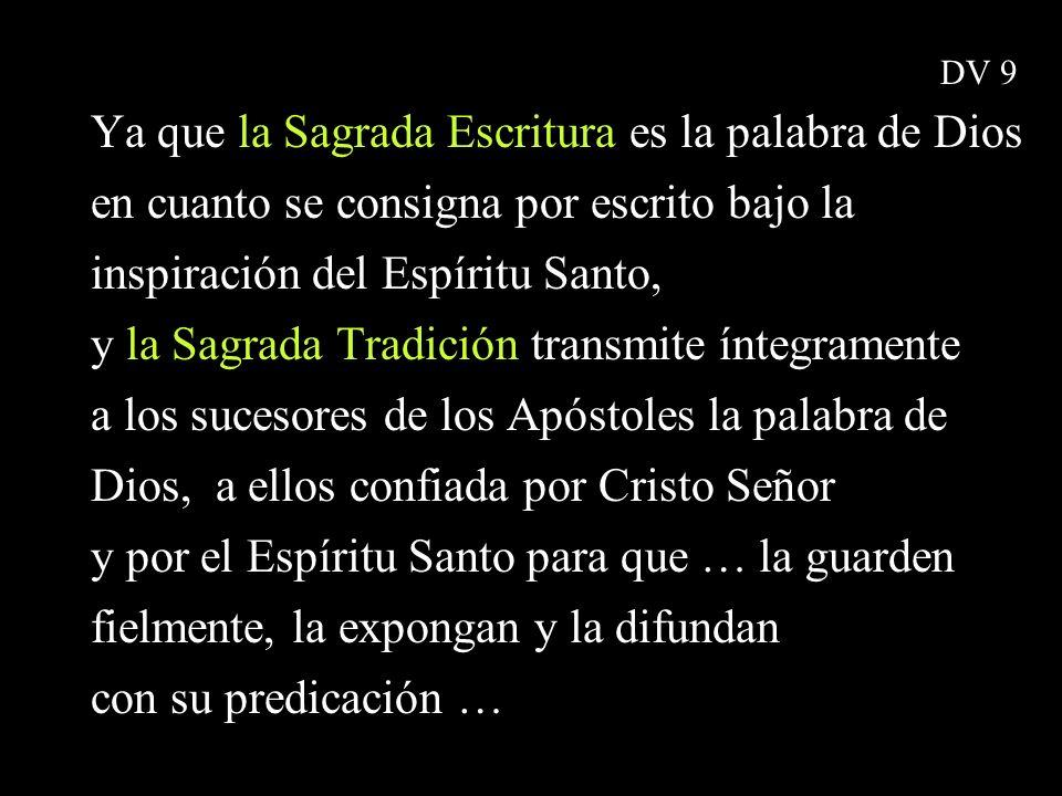 Ya que la Sagrada Escritura es la palabra de Dios