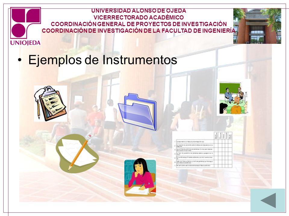 Ejemplos de Instrumentos