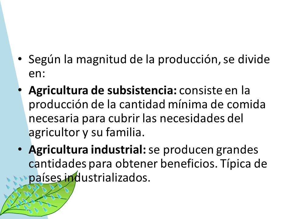 Según la magnitud de la producción, se divide en: