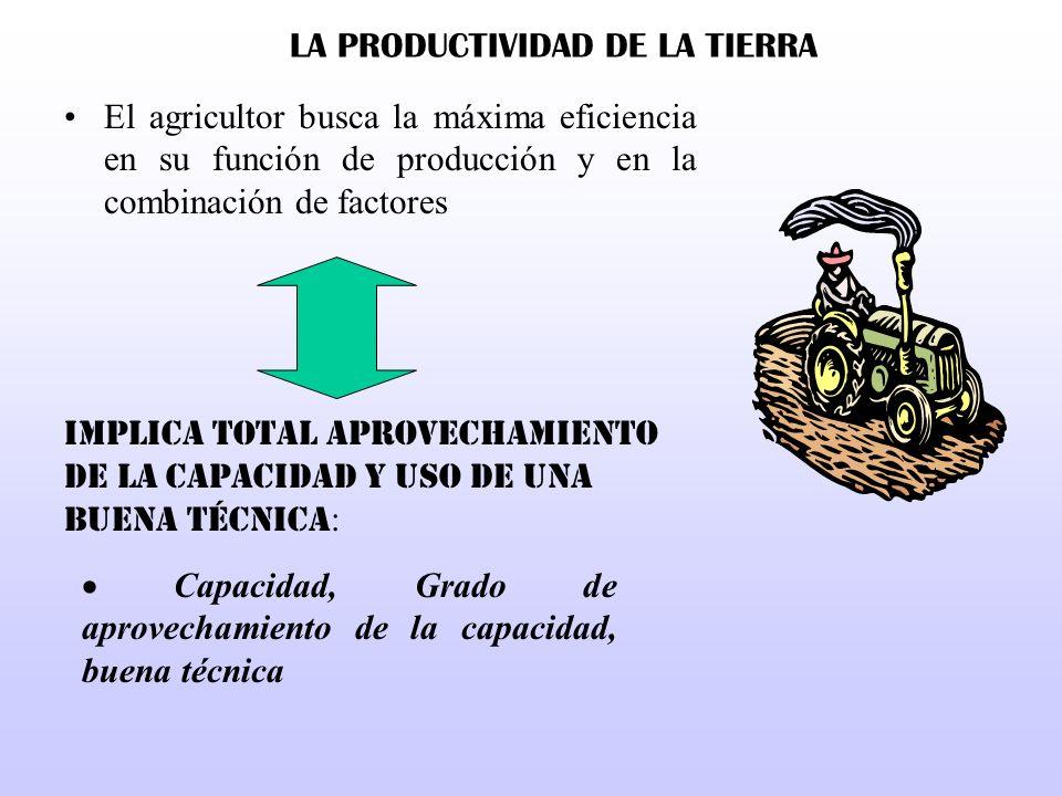 LA PRODUCTIVIDAD DE LA TIERRA