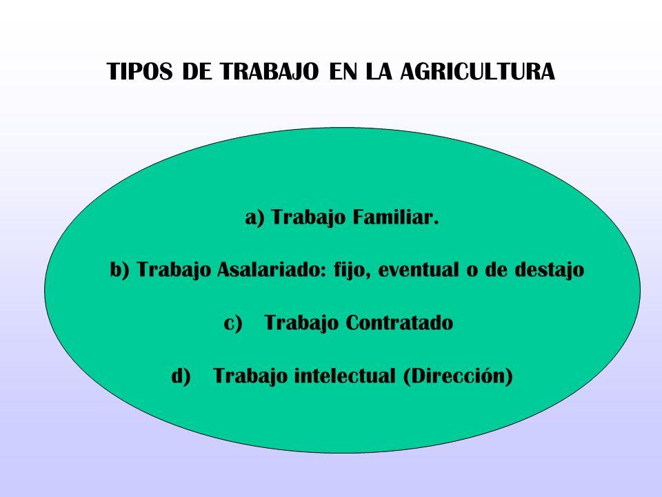 TIPOS DE TRABAJO EN LA AGRICULTURA