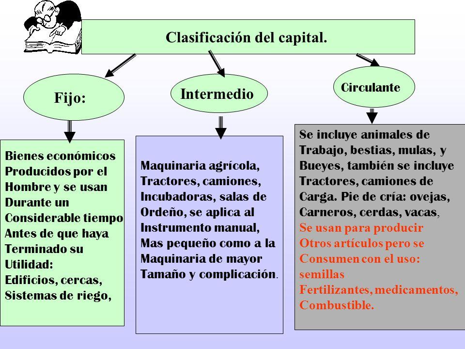 Clasificación del capital.