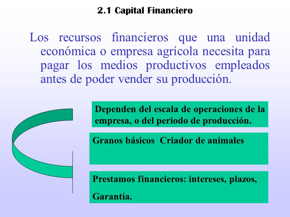 2.1 Capital Financiero
