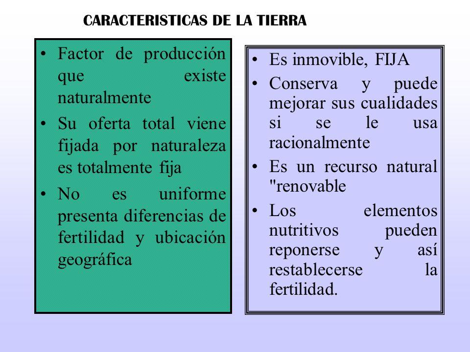 CARACTERISTICAS DE LA TIERRA
