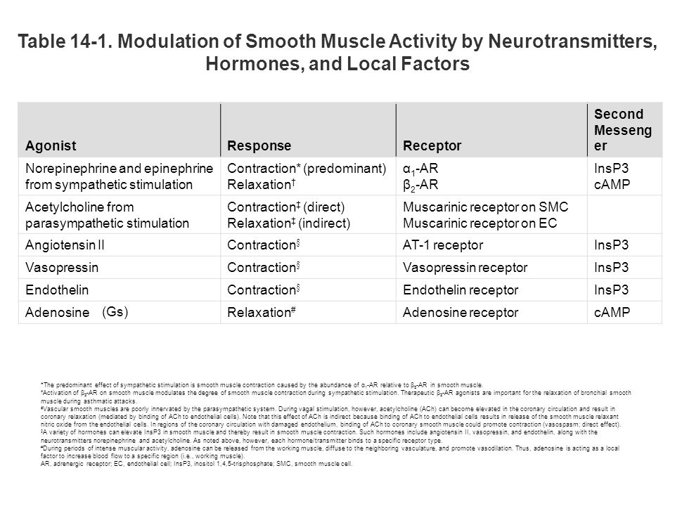 Table Modulation of Smooth Muscle Activity by Neurotransmitters, Hormones, and Local Factors