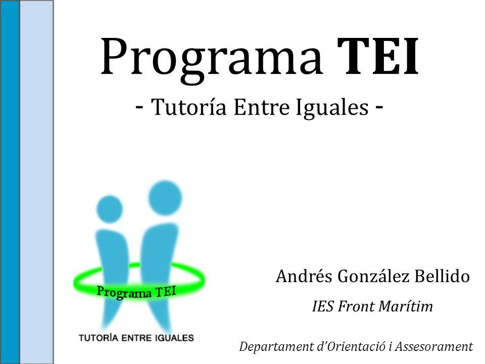 Programa TEI - Tutoría Entre Iguales -