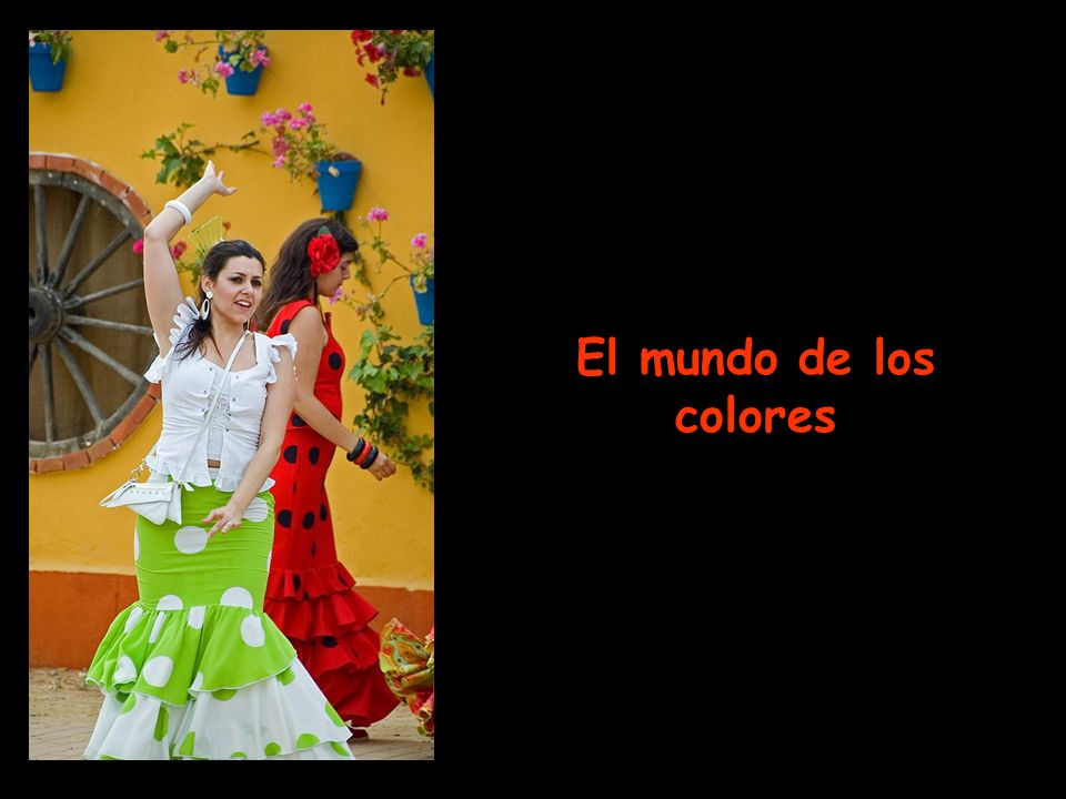 El mundo de los colores