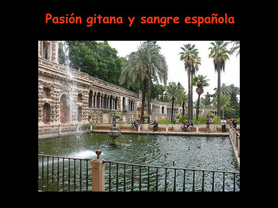 Pasión gitana y sangre española