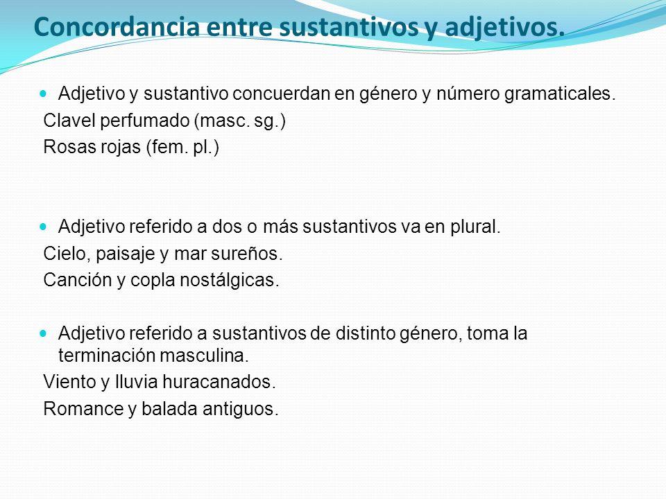 Concordancia entre sustantivos y adjetivos.