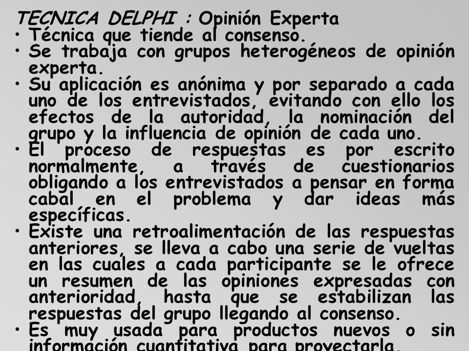 TECNICA DELPHI : Opinión Experta