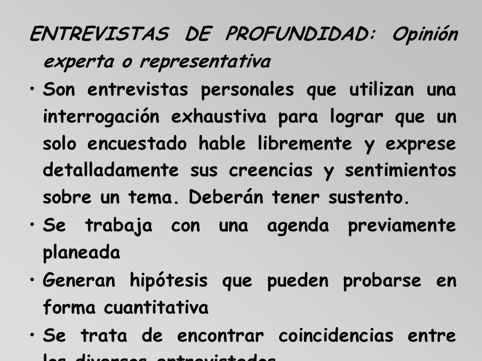 ENTREVISTAS DE PROFUNDIDAD: Opinión experta o representativa