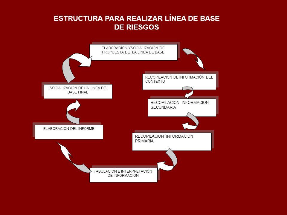 ESTRUCTURA PARA REALIZAR LÍNEA DE BASE DE RIESGOS