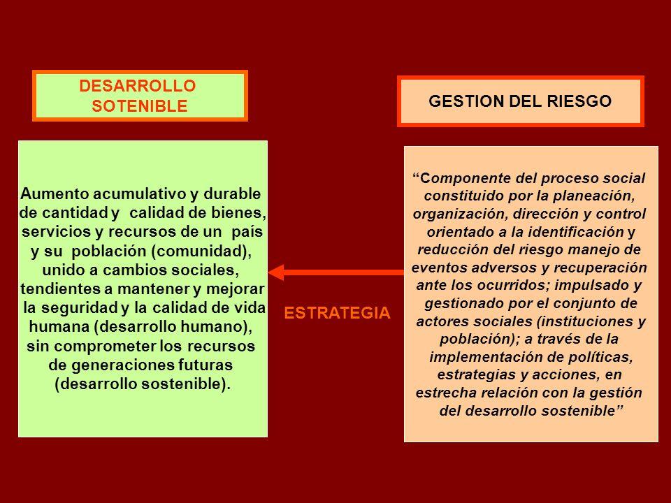 DESARROLLO SOTENIBLE GESTION DEL RIESGO