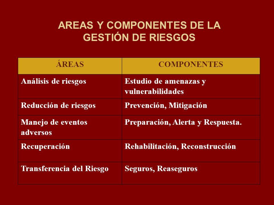 AREAS Y COMPONENTES DE LA GESTIÓN DE RIESGOS