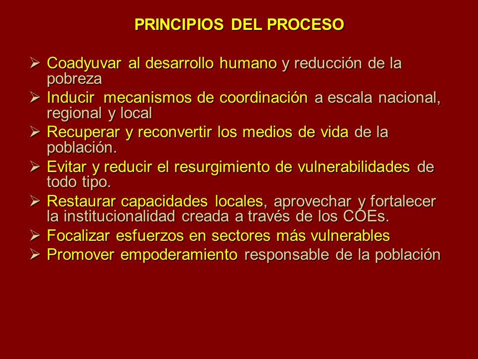 PRINCIPIOS DEL PROCESO