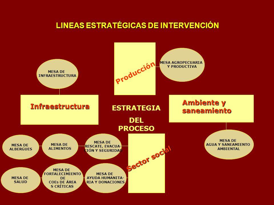 LINEAS ESTRATÉGICAS DE INTERVENCIÓN