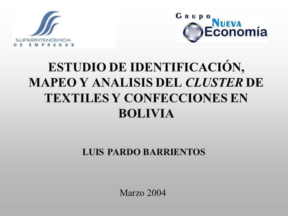 ESTUDIO DE IDENTIFICACIÓN, MAPEO Y ANALISIS DEL CLUSTER DE TEXTILES Y CONFECCIONES EN BOLIVIA