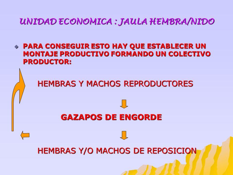 UNIDAD ECONOMICA : JAULA HEMBRA/NIDO