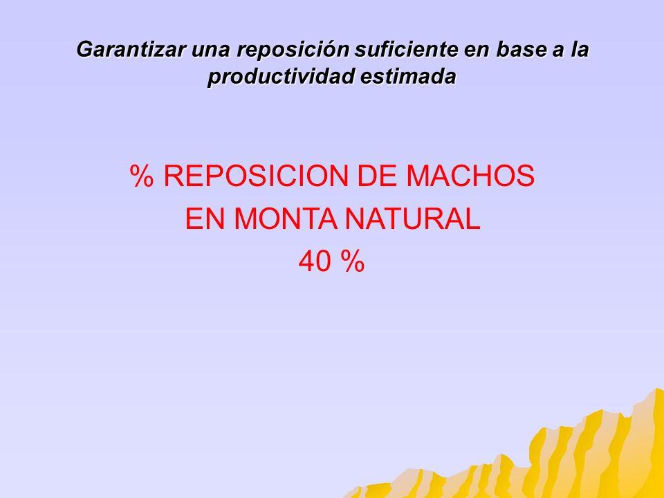 % REPOSICION DE MACHOS EN MONTA NATURAL 40 %