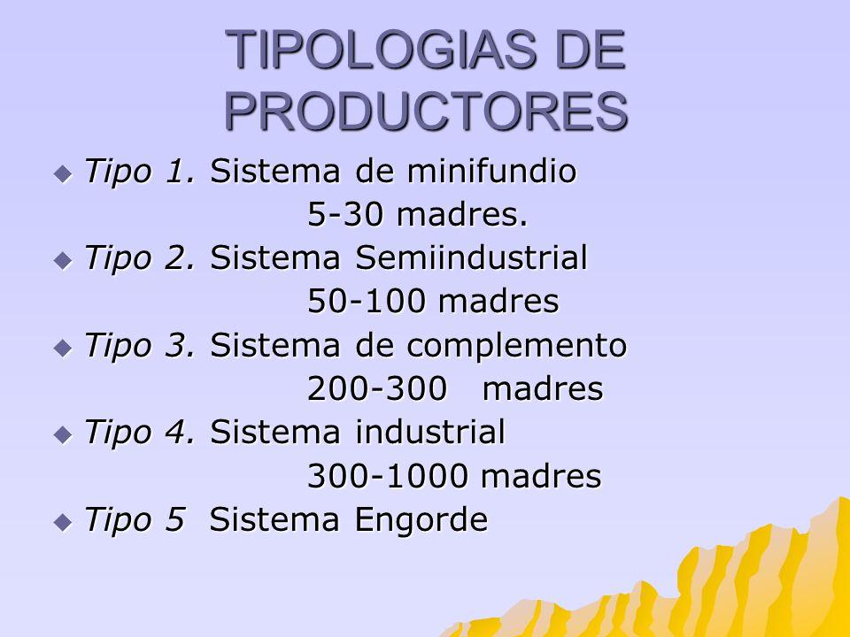 TIPOLOGIAS DE PRODUCTORES