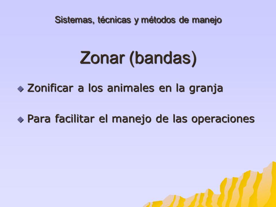 Sistemas, técnicas y métodos de manejo Zonar (bandas)