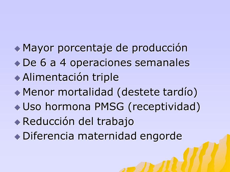 Mayor porcentaje de producción