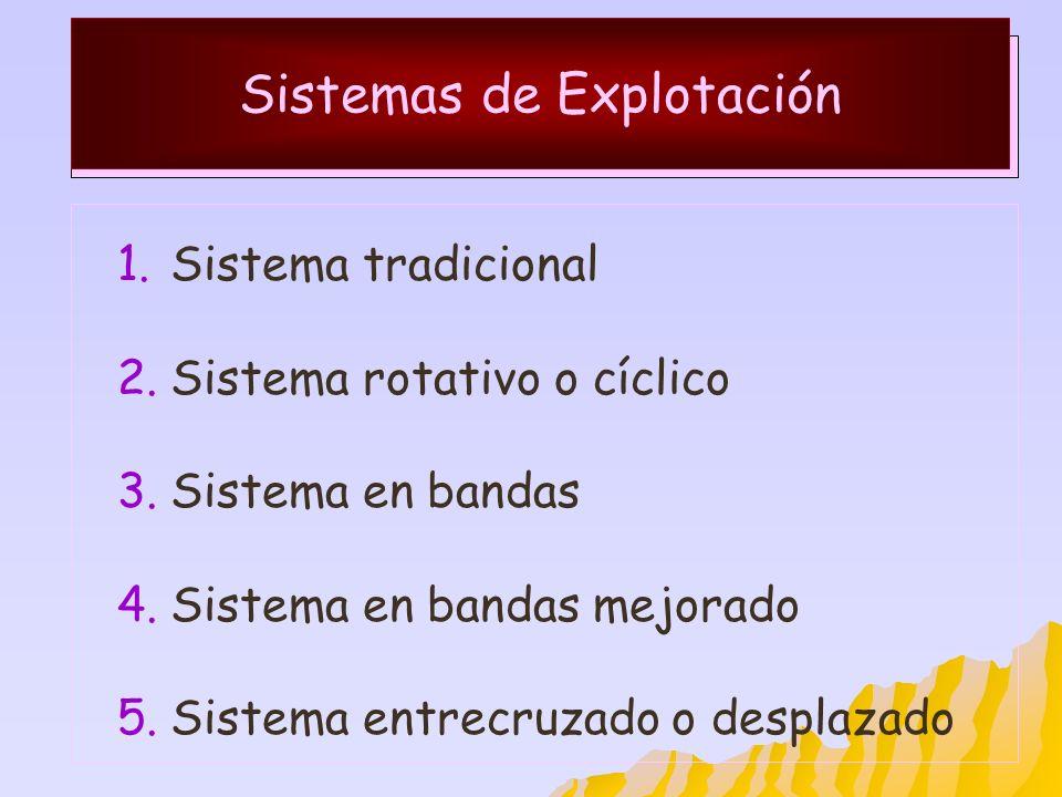 Sistemas de Explotación