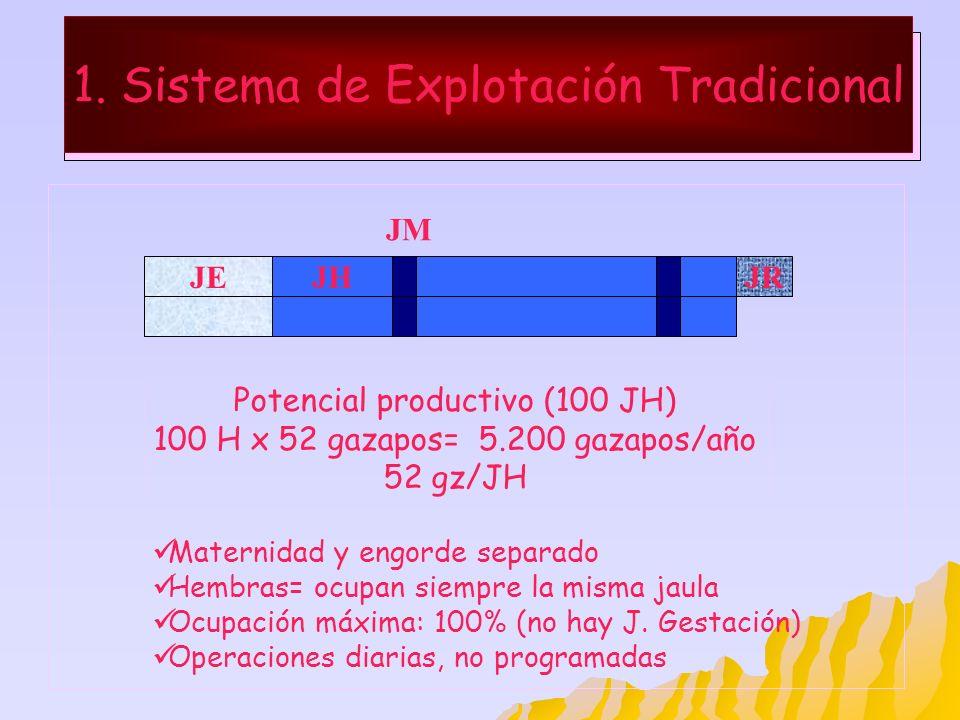 1. Sistema de Explotación Tradicional