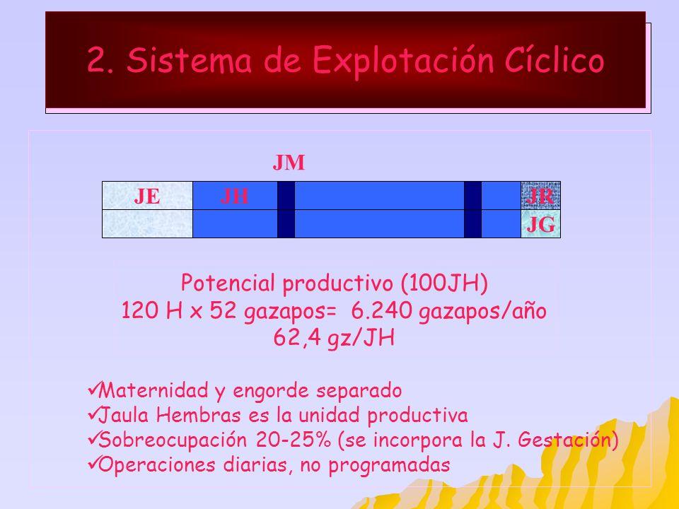 2. Sistema de Explotación Cíclico