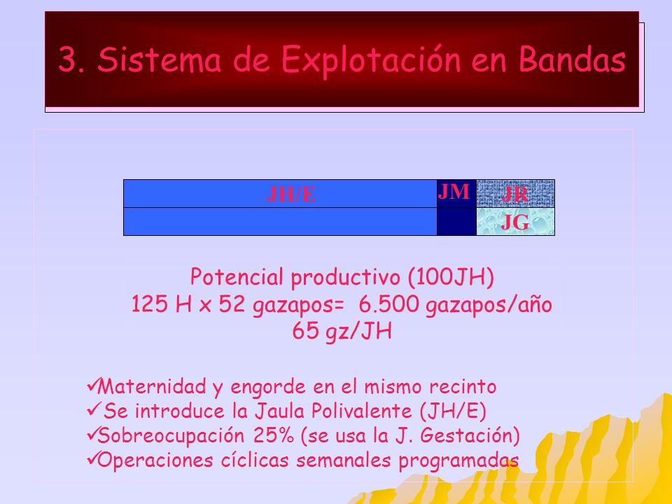 3. Sistema de Explotación en Bandas