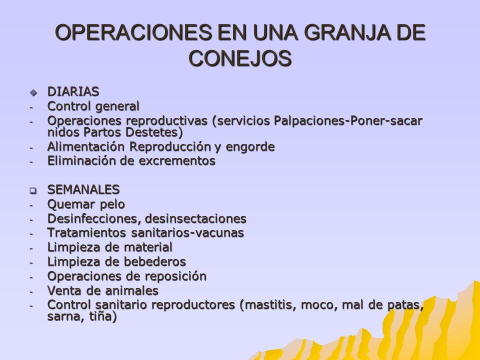 OPERACIONES EN UNA GRANJA DE CONEJOS