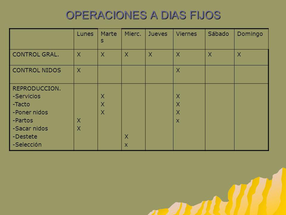 OPERACIONES A DIAS FIJOS