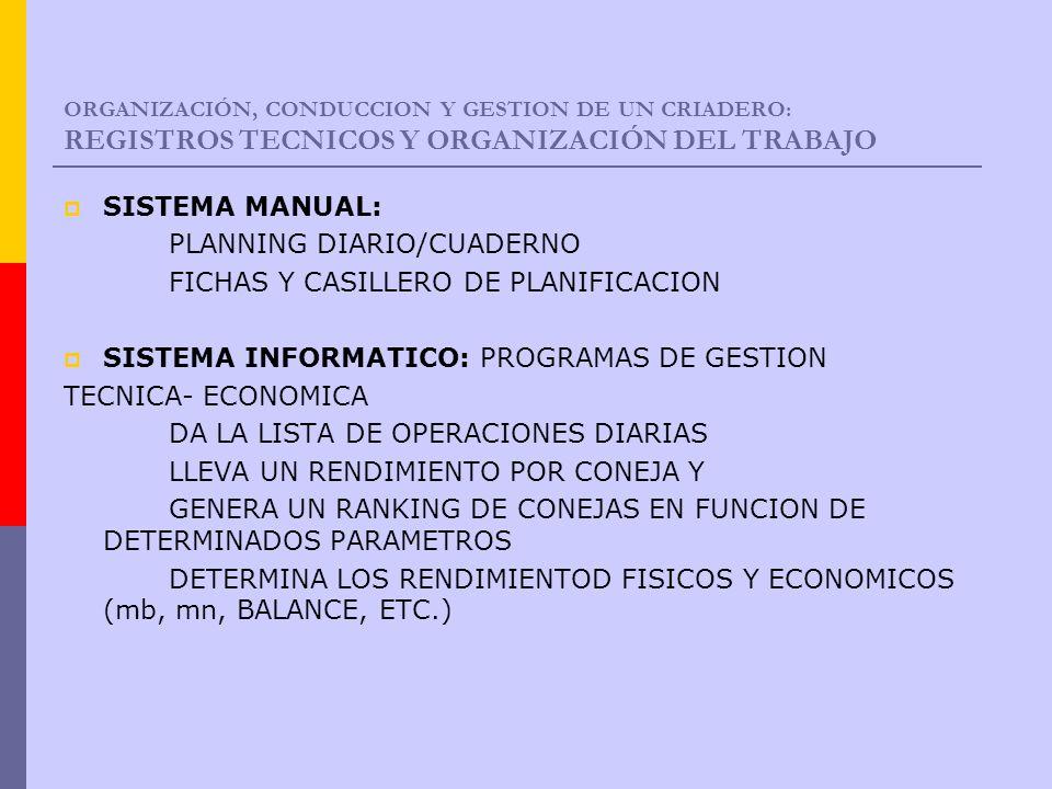 PLANNING DIARIO/CUADERNO FICHAS Y CASILLERO DE PLANIFICACION