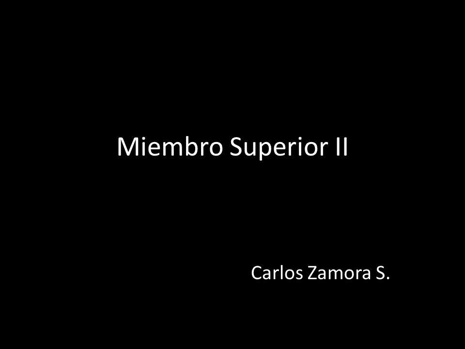 Miembro Superior II Carlos Zamora S.