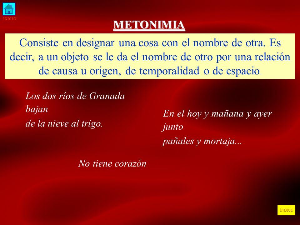 INICIO METONIMIA.