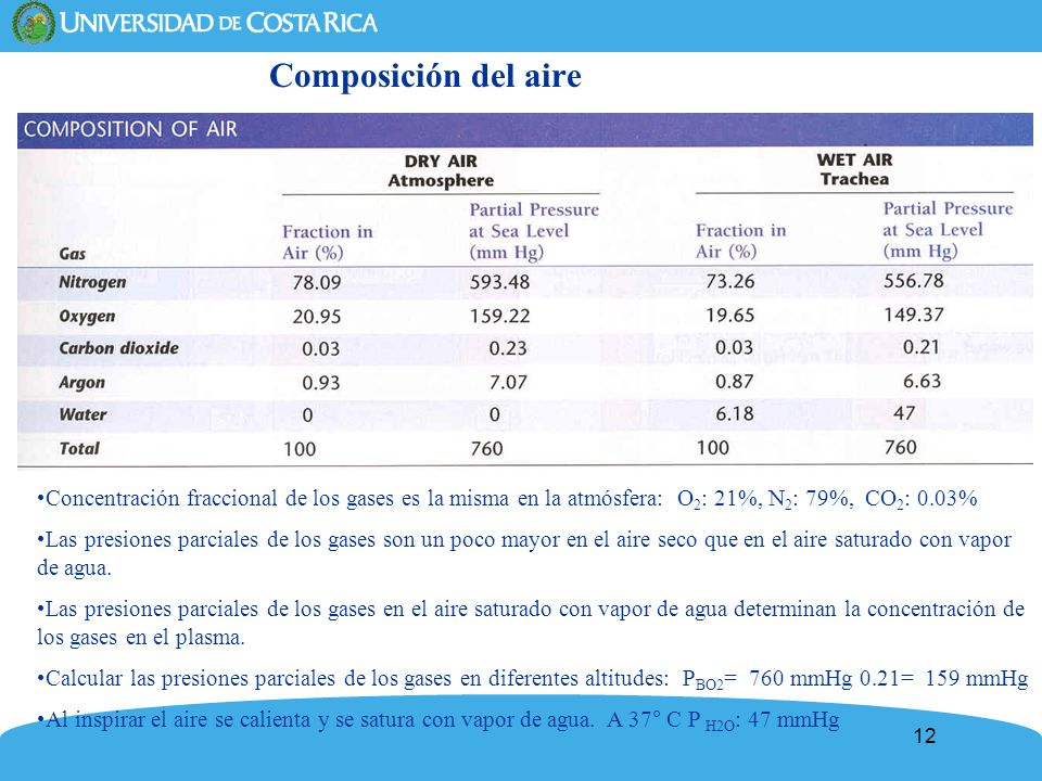 Composición del aire Concentración fraccional de los gases es la misma en la atmósfera: O2: 21%, N2: 79%, CO2: 0.03%