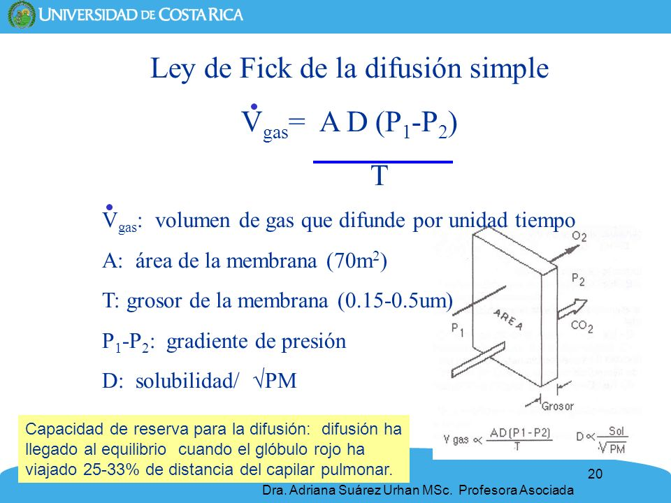Ley de Fick de la difusión simple