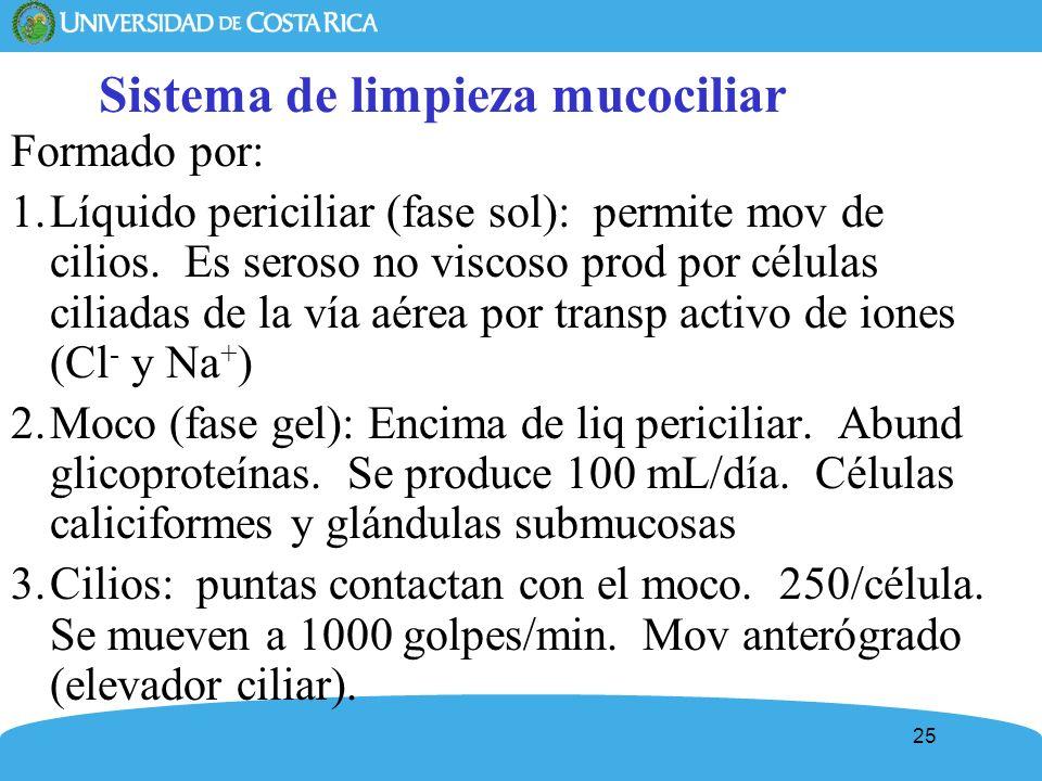 Sistema de limpieza mucociliar